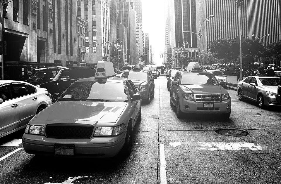 Mallucci Man New York